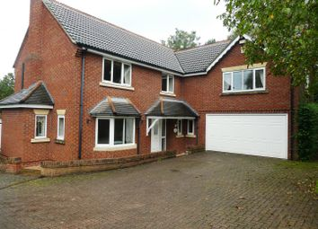 Thumbnail 5 bed detached house to rent in Elms Garden, Littleover, Derby