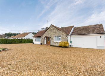 Thumbnail 2 bed detached bungalow for sale in St Leonards, Ringwood, Hampshire