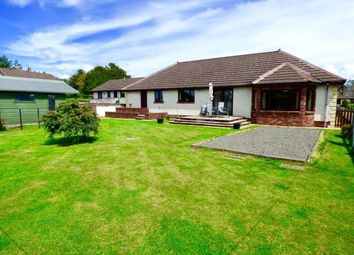 Thumbnail 4 bed detached bungalow for sale in Lockshorik, Hall Road, Ecclefechan, Lockerbie