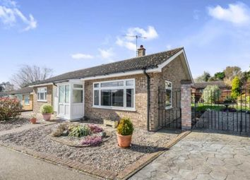 Thumbnail 3 bed bungalow for sale in Halesworth, Suffolk