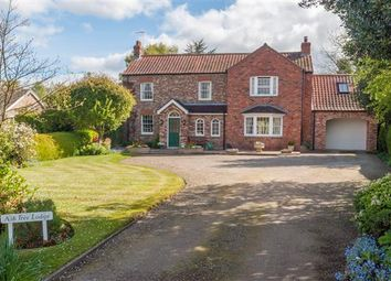 Thumbnail 4 bed detached house for sale in Ash Tree Lodge, Warthill, York