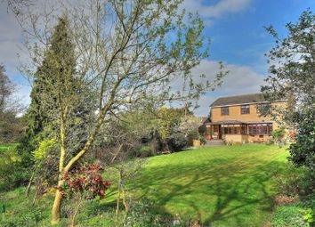 Thumbnail 4 bed detached house for sale in Curson Road, Norwich