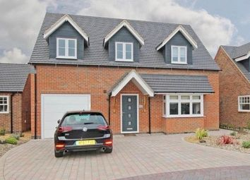 Thumbnail 4 bed detached house to rent in Bricklow Keep, Anslow