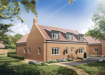 Thumbnail 4 bed detached house for sale in High Street, North Elmham, Dereham