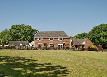 Thumbnail 4 bed detached house for sale in Bisterne Close, Burley, Ringwood
