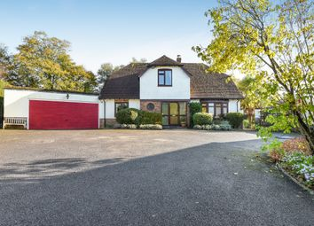 Thumbnail 4 bed detached bungalow for sale in Nyetimber Copse, West Chiltington