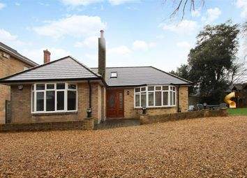 Thumbnail 4 bed bungalow to rent in St. Swithuns Road South, Bournemouth