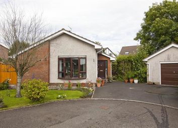 Thumbnail 3 bed terraced bungalow for sale in Henly Avenue, Carrickfergus