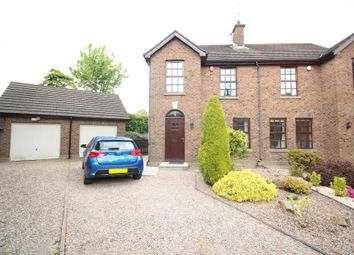 Thumbnail 3 bed semi-detached house to rent in Ardmillan, Fortwilliam Park, Belfast