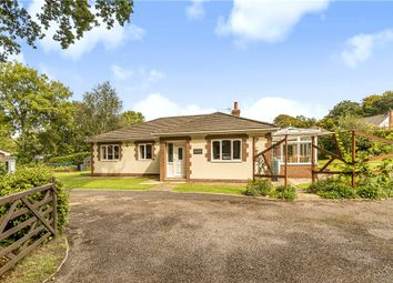 Thumbnail 3 bed detached bungalow for sale in Harcombe Road, Axminster, Devon