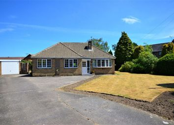 Thumbnail 3 bed bungalow to rent in Baffam Gardens, Brayton, Selby