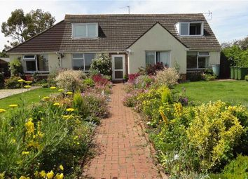 Thumbnail 5 bed bungalow for sale in Loop Road, Beachley, Chepstow