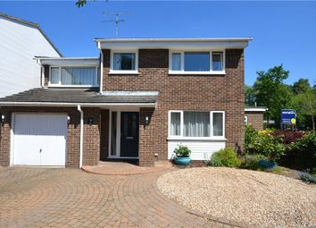 Thumbnail 4 bed detached house for sale in West Fryerne, Yateley, Hampshire