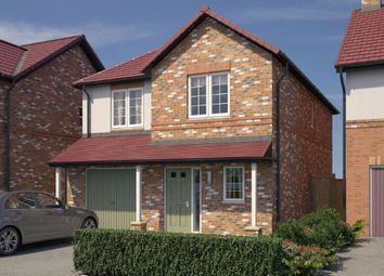 "Thumbnail 3 bed detached house for sale in ""The Newton"" at Chilton, Ferryhill"