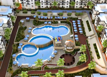 Thumbnail Studio for sale in Apartment In Popular Area Naama Bay In Sharm El Shiekh, Egypt