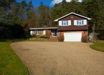 Thumbnail 4 bed detached house for sale in Walldown Road, Whitehill, Bordon
