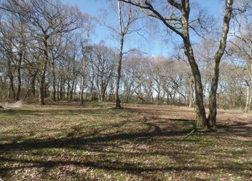 Thumbnail Land for sale in Brackenhill House, Shotton Colliery