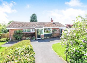 Thumbnail 3 bed detached bungalow for sale in The Mount, Driffield