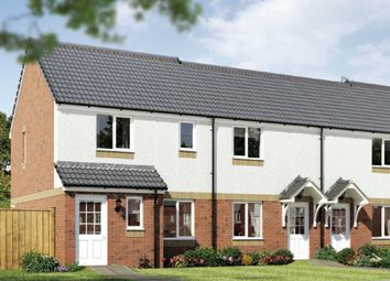 "Thumbnail 3 bedroom end terrace house for sale in ""The Newmore"" at Grosset Place, Glenrothes"