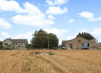 Thumbnail Farm for sale in Ardallie, Mintlaw, Peterhead