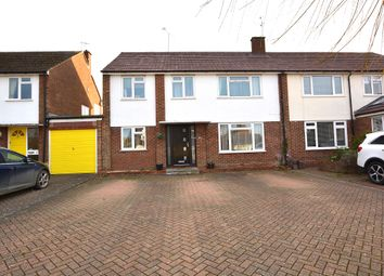 Thumbnail 5 bed semi-detached house for sale in Roseacres, Takeley, Bishop's Stortford
