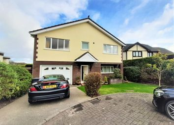 Thumbnail 4 bed detached house to rent in 6 Hilltop Rise, Farmhill, Douglas