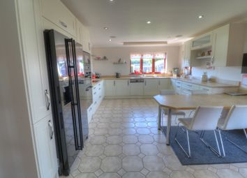 Thumbnail 4 bed bungalow for sale in Craigo, Montrose