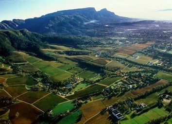 Thumbnail Farm for sale in Confidentially Available Wine Estate, Constantia, Cape Town, Western Cape, South Africa