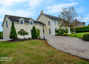 Thumbnail 5 bed detached house for sale in Dromore Road, Donaghcloney, Craigavon, County Armagh