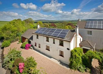 Thumbnail 3 bedroom detached house for sale in St. Dominick, Saltash