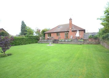 Thumbnail 4 bed detached bungalow for sale in Terrace Road North, Binfield, Bracknell