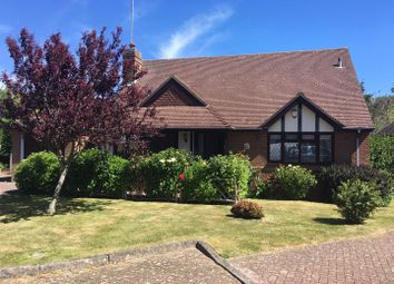 Thumbnail 2 bed bungalow to rent in Chelgates, Bexhill-On-Sea