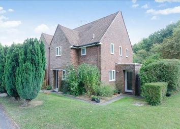 Thumbnail 6 bed semi-detached house to rent in Wavell Way, Winchester