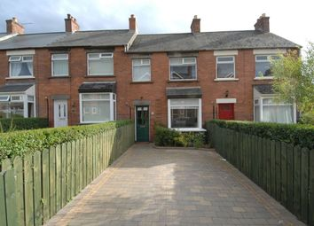 Thumbnail 3 bed terraced house to rent in Park Avenue, Holywood
