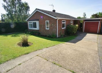 Thumbnail 3 bed detached bungalow to rent in Chrismund Way, Great Tey, Colchester