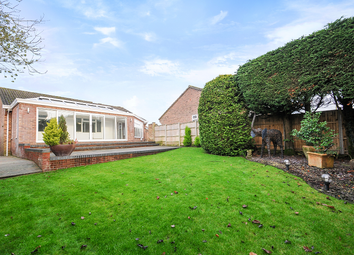 Thumbnail 4 bed detached bungalow to rent in Bartley Grove, Bartley