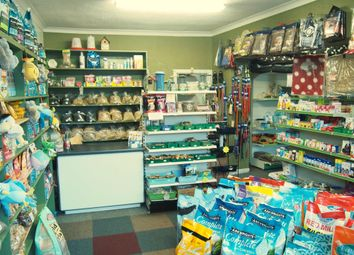 Thumbnail Retail premises for sale in Pets, Supplies & Services DN6, Askern, South Yorkshire