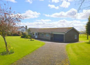 Thumbnail 3 bed detached bungalow for sale in Castle Terrace, Berwick Upon Tweed, Northumberland
