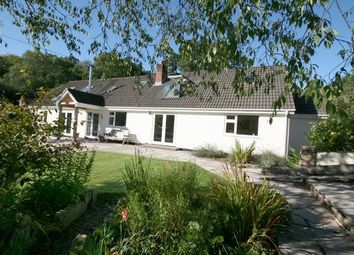 Thumbnail 4 bedroom detached bungalow for sale in Bampton, Tiverton