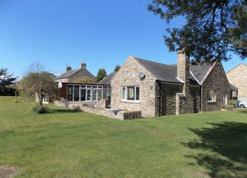 Thumbnail 4 bed detached bungalow for sale in Felton, Morpeth