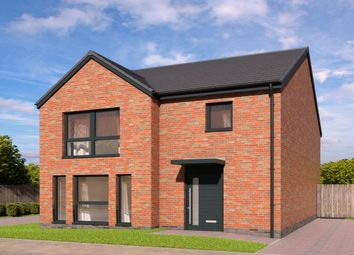 Thumbnail 3 bed detached house for sale in Devongrange, Sauchie, Alloa