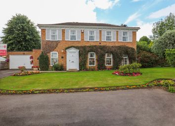 Thumbnail 4 bed detached house for sale in Holkham Rise, Sheffield
