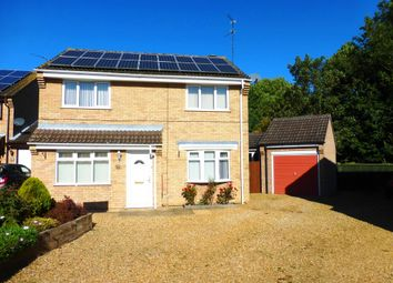 Thumbnail 4 bed detached house for sale in Squires Gate, Gunthorpe, Peterborough