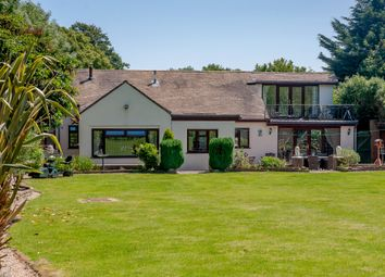 4 bed detached bungalow for sale in Lodge Lane, Langham, Colchester CO4