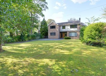 Thumbnail 4 bed detached house for sale in Melton Road, Melton, North Ferriby