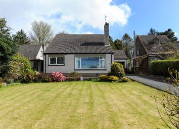 Thumbnail 4 bed detached house for sale in Mountain Park, Newtownards