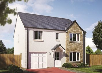 "Thumbnail 4 bed detached house for sale in ""The Whithorn"" at Cotland Drive, Falkirk"