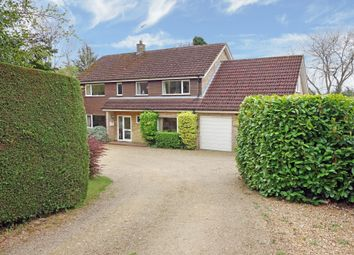 Thumbnail 5 bed detached house for sale in Holton Road, Halesworth