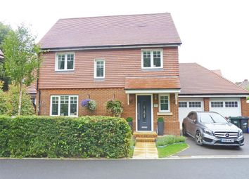 Thumbnail 4 bed detached house for sale in Chichester Road, Hellingly, Hailsham