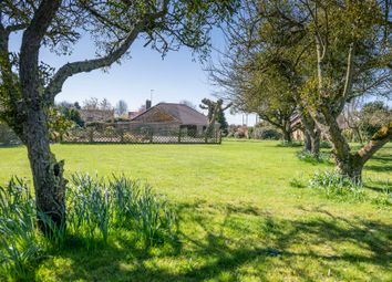 Thumbnail 4 bed detached bungalow for sale in West Way, Wimbotsham, King's Lynn, Norfolk